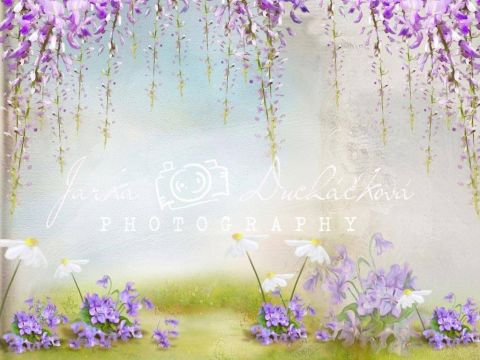 Fotopozadí - DESIGN 402