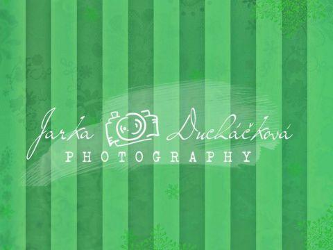 Fotopozadí - ZIMA 88
