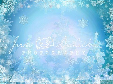 Fotopozadí - ZIMA 95