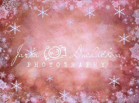 Fotopozadí - ZIMA 99