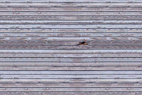 Weathered Wood 2,4x2,4m 11032