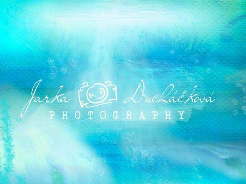 Fotopozadí - DESIGN 627