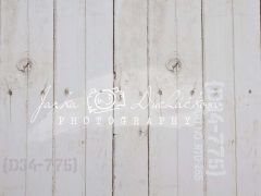 Fotopozadí - DESIGN 88
