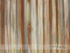 Fotopozadí - vlnitý plech 2