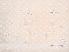Fotopozadí - motýlci - béžová