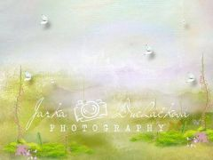 Fotopozadí - DESIGN 410