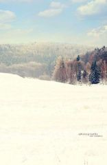 Fotopozadí - SPOJENÉ reálné - Zimní krajinka 3