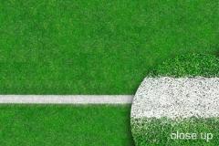 Grass Sports Field 2,4x2,4m 11046