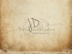 Fotopozadí - DESIGN 667