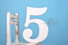 Číslice MAXI pětka bílá