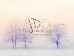 JD PHOTOGRAPHY  Fotopozadí - WINTER 12
