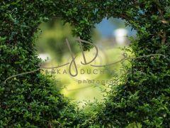 Fotopozadí - LOVE 16