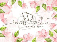 Fotopozadí - AKVAREL FLOWERS 2