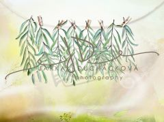 Fotopozadí - Jarní zeleň 21