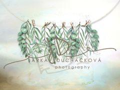 Fotopozadí - Jarní zeleň 24