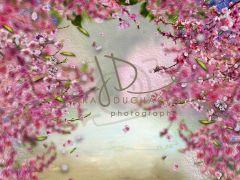 Fotopozadí - Květy jarní 5