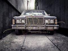 Fotopozadí - FANTASY 84