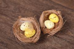 Hnízdečko s vajíčky