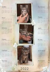 Kalendář roční 2022 - číslo 30