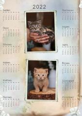 Kalendář roční 2022 - číslo 32