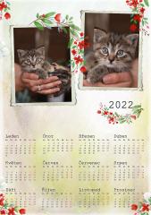 Kalendář roční 2022 - číslo 34
