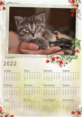 Kalendář roční 2022 - číslo 35
