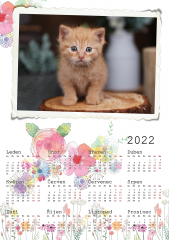 Kalendář roční 2022 - číslo 36