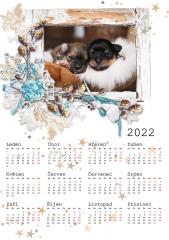 Kalendář roční 2022 - číslo 39