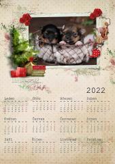 Kalendář roční 2022 - číslo 40