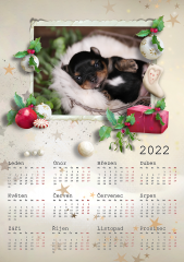 Kalendář roční 2022 - číslo 42