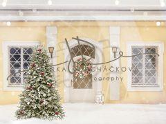 Vánoční fotopozadí - DESIGN 846