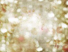 Fotopozadí - Vánoční světýlkování 5
