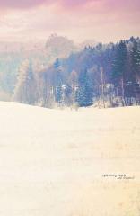 Fotopozadí - SPOJENÉ reálné - Zimní krajinka 2
