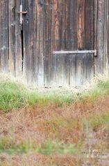 Fotopozadí - stěna+podlaha - VRATA v SADU