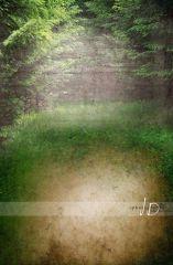 Fotopozadí - stěna+podlaha - Pohádkový les velký 3