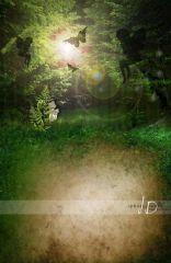 Fotopozadí - stěna+podlaha - Pohádkový les velký 2