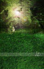 Fotopozadí - stěna+podlaha - Pohádkový les velký 1